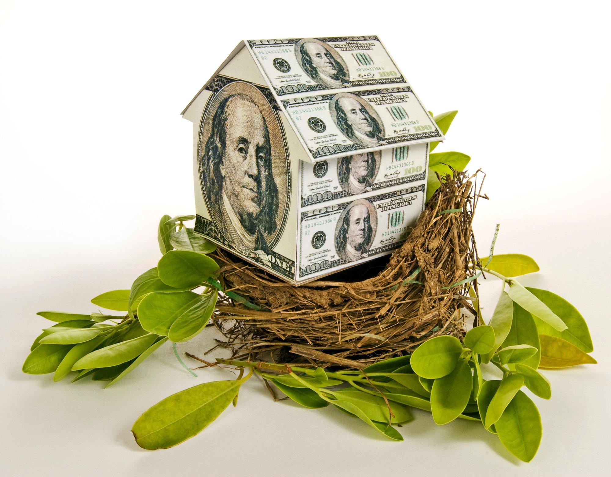 Residential Nest Egg House Money House