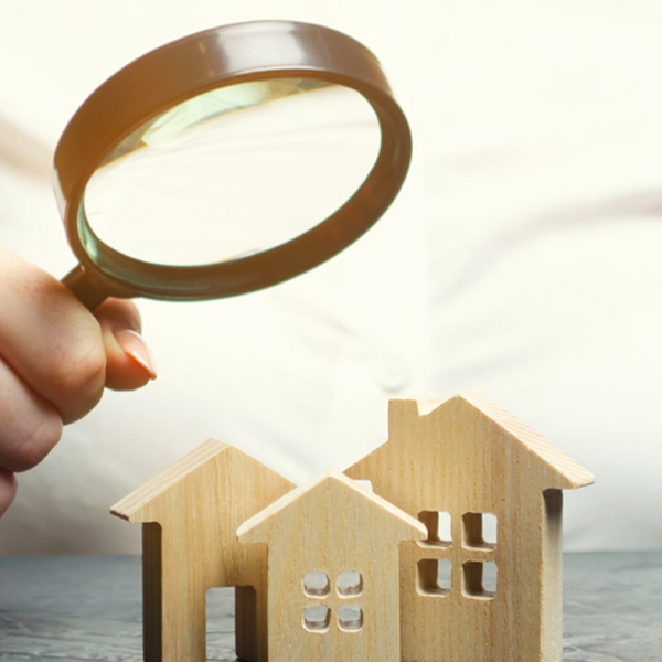 Detailed Property Inspections