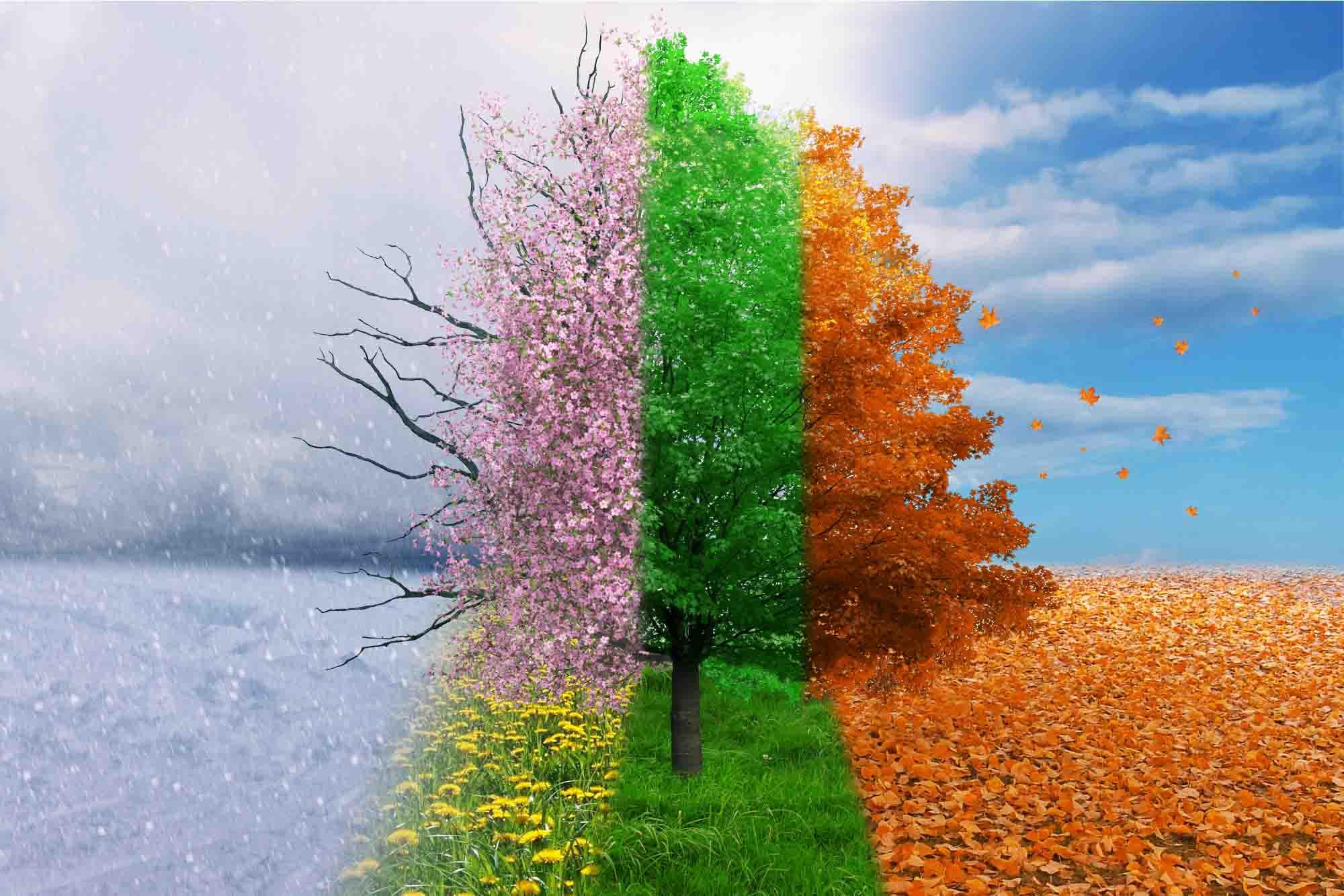 Seasonal Property Management Checklist